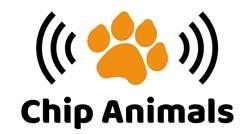 Chip-Animals znakowanie zwierząt